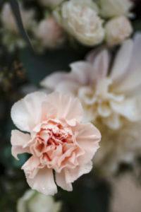 Groupe Musique mariage et évenements sud de la france Rose décoration bouquet